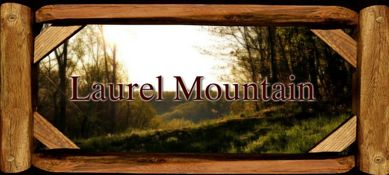 Laurel Mountain Farm - Home
